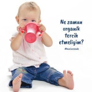 Ne Zaman Organik Tercih Etmeliyim?