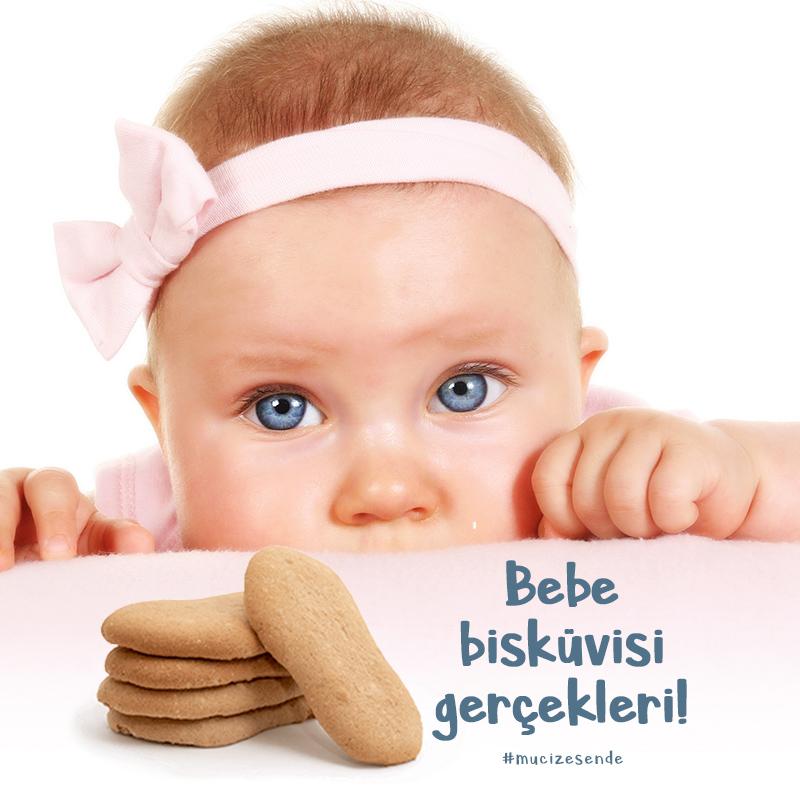 Bebe Bisküvisi Gerçekleri!