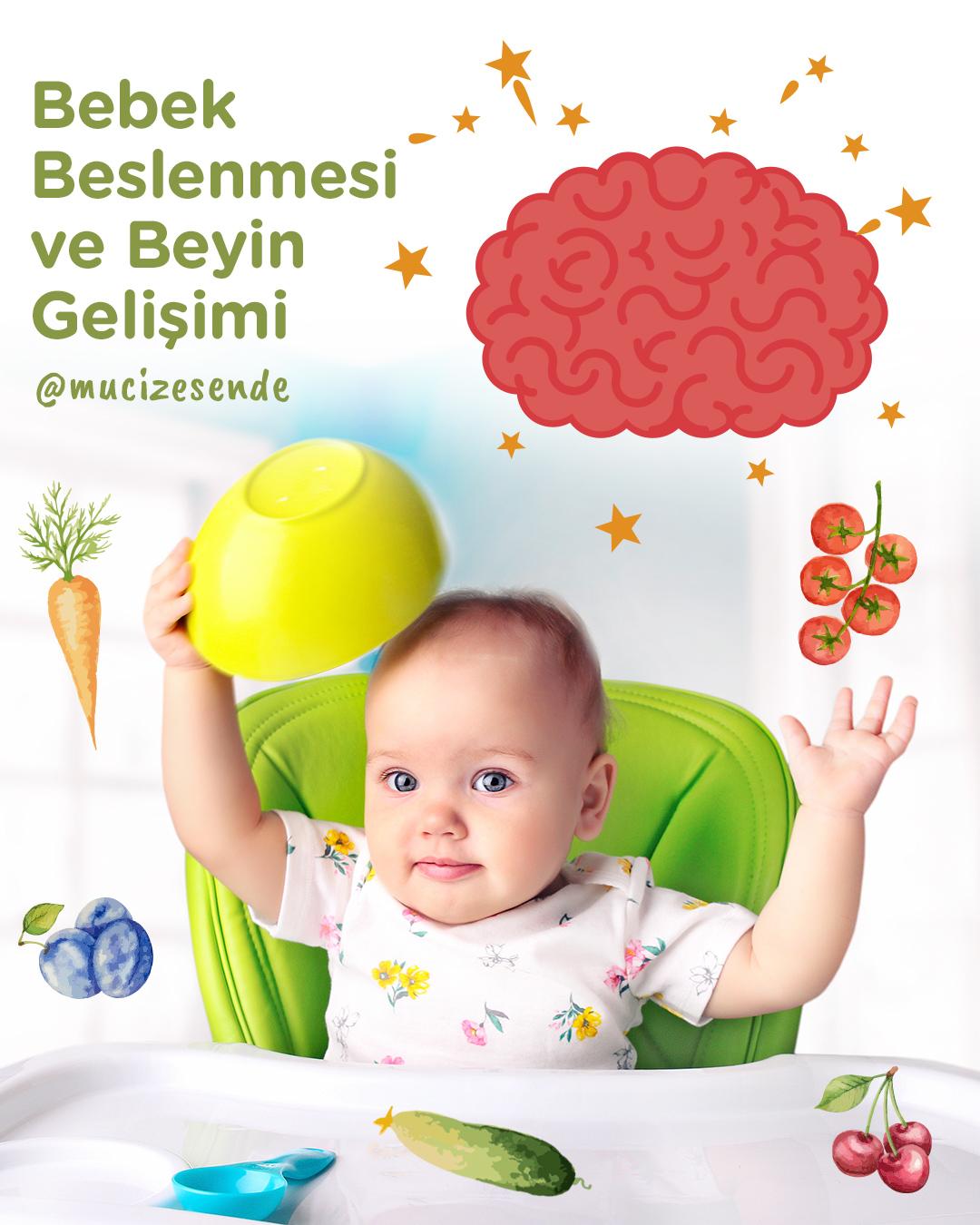 Bebek Beslenmesi ve Beyin Gelişimi
